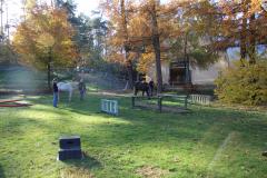 Parcours-fuer-ein-Teambuilding-mit-Pferden-Reken