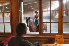 Teambuilding mit Pferden Schweiz-11